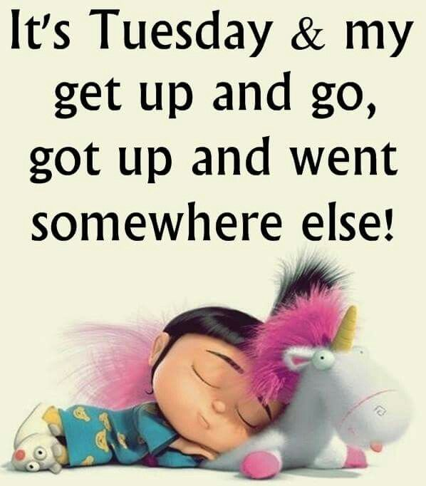 It's Tuesday and my get up and go got up and went somewhere else.
