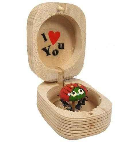 Proposing...but seriously. Put this ring in this. This was my childhood and ladybugs are my thing!!