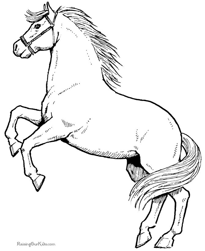 Mason Horse Coloring Pages