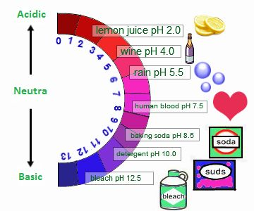 http://images.tutorvista.com/cms/images/46/acids-and-bases.png