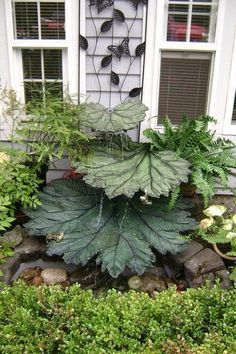 Concrete leaves fountain. I LOVE that. I think I would have to order the leaves from a flower shop to mold those