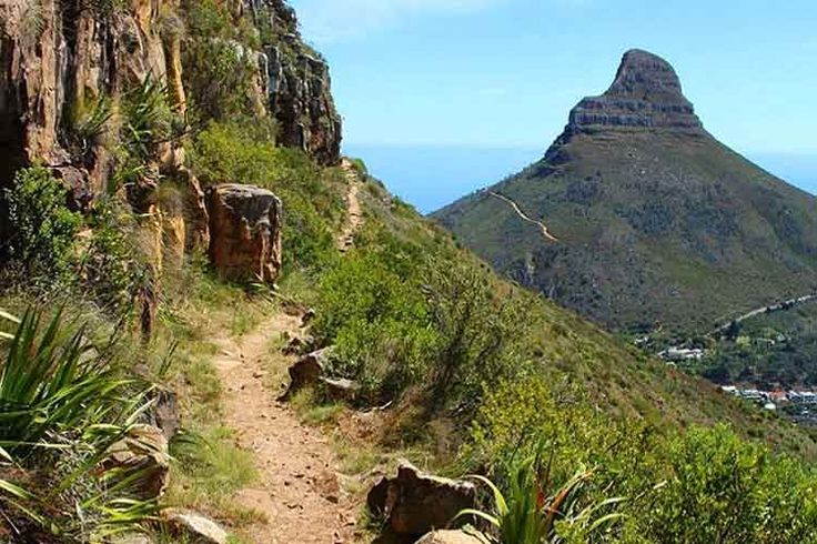 15 Truly Unique Things to do in Cape Town – The Inside Guide