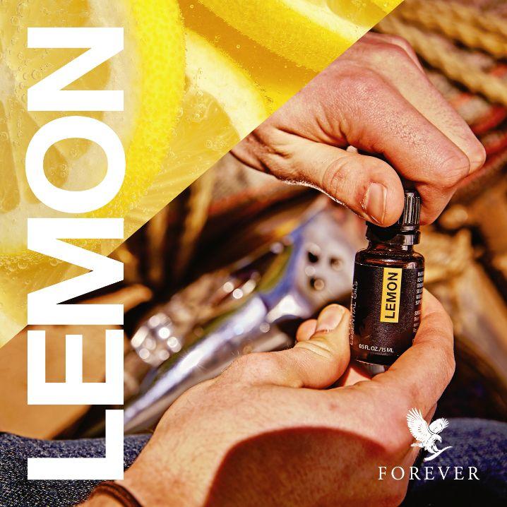 A citromokat kézzel szedik és gondosan ápolják, amíg tökéletesen érettek nem lesznek, mivel a lédús citromok adják a legjobb minőségű olajat. A Forever Living biztosítja a természet legtisztább citromolaját, amely felemel és erőt ad. https://www.youtube.com/watch?v=NfLw_jp3raM http://360000339313.fbo.foreverliving.com/page/products/all-products/2-nutrition/507/hun/hu Segítsünk? gaboka@flp.com Vedd meg: https://www.flpshop.hu/customers/recommend/load?id=ZmxwXzQ2NDkx