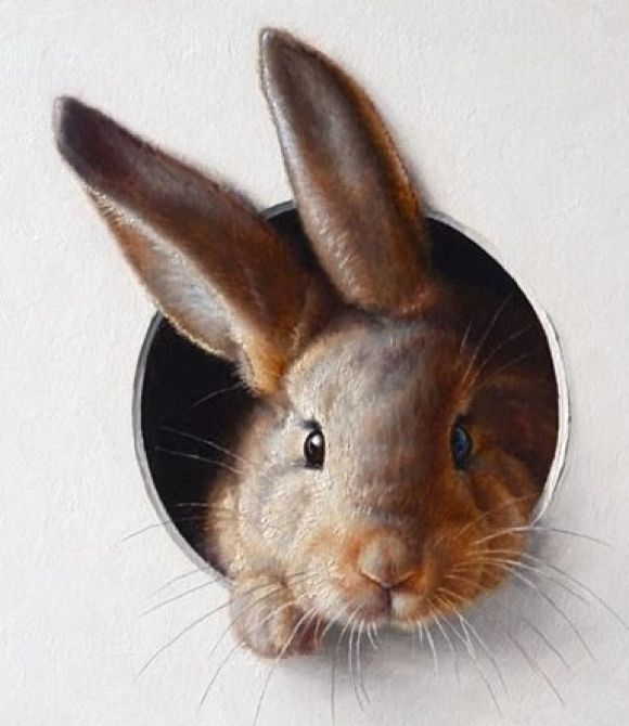 Bunny | Cutestpaw.com