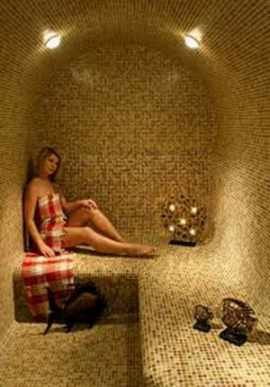 Steam room perfect for my new house? please? would be a great wedding present xx