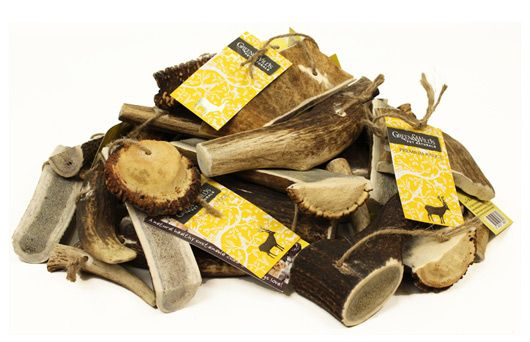 Antler Dog Chews | Green and Wilds