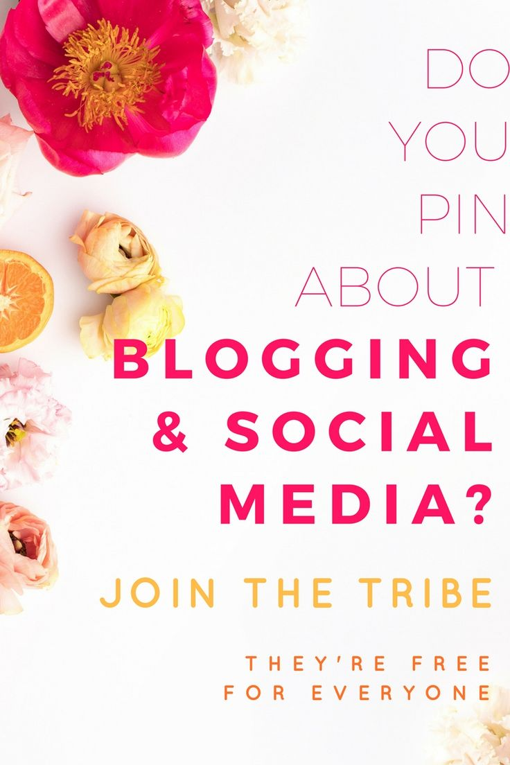 Want to grow your blog traffic? Have you heard of Tailwind Tribes? Join the Tailwind Tribe dedicated to all things Blogging & Social Media to promote your blog content & see even more traffic to your blog! Affiliate link for shareasale. Tailwind Tribes are available to everyone!