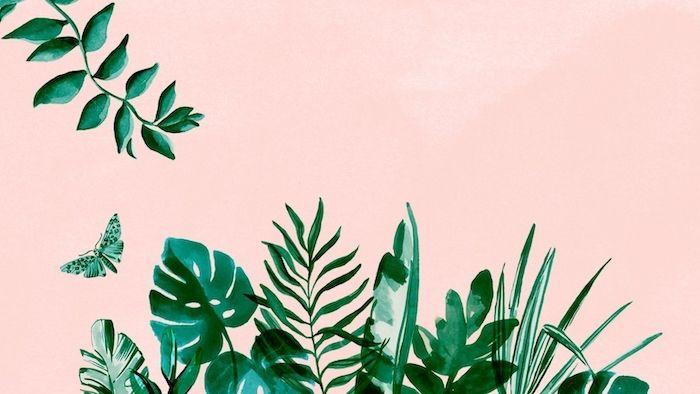 Pink Background Tumblr Aesthetic Backgrounds Painting Of Green Palm Leaves Of Different K In 2020 Cute Computer Backgrounds Aesthetic Wallpapers Cute Summer Wallpapers