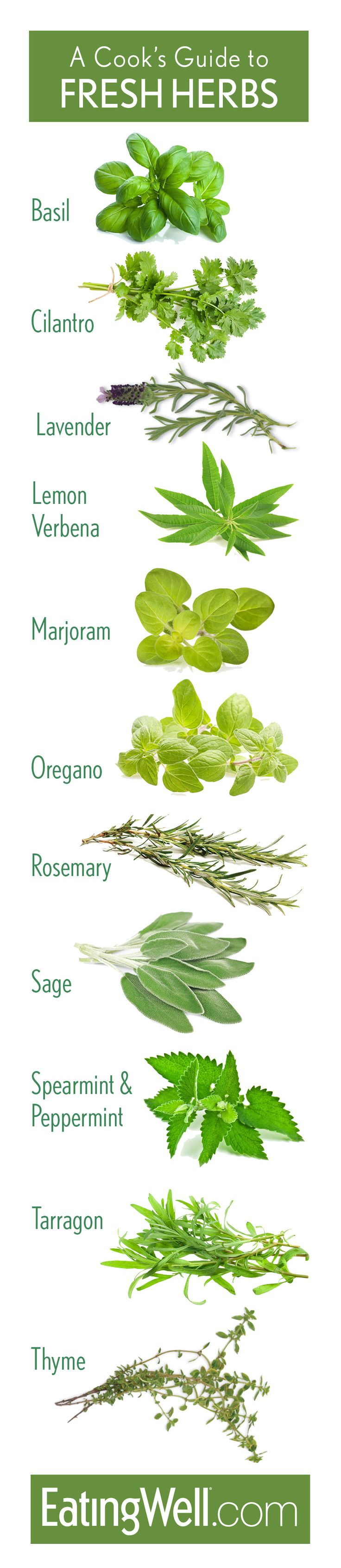 Cooking with herbs is an easy way to infuse a recipe with flavor without increasing calories or fat. Here are out favorites plus ways to use them.
