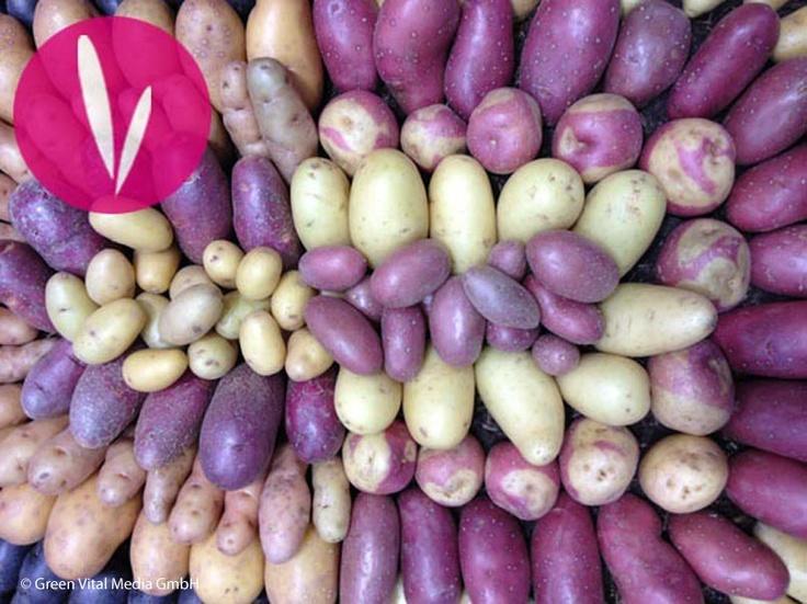 Kaum zu glauben - Kartoffeln eignen sich auch wunderbar für Kosmetik!  Wenn Sie mehr erfahren möchten, klicken Sie auf das Bild.