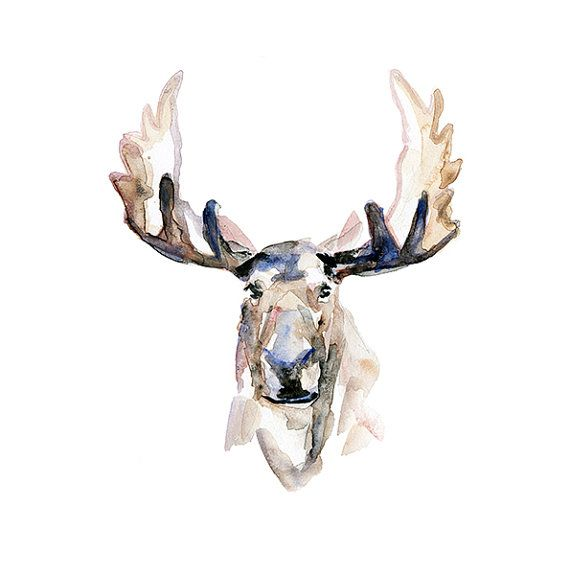 Aquarel van een eland  giclee print  Aquarel dier  door Zendrawing, €15.50