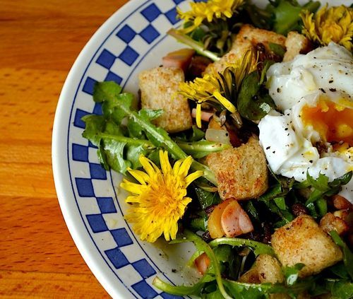 Best 25+ Dandelion salad ideas on Pinterest | Eating ...