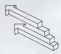 Optical Illusions and Visual Perception Puzzles: Mis-Direction