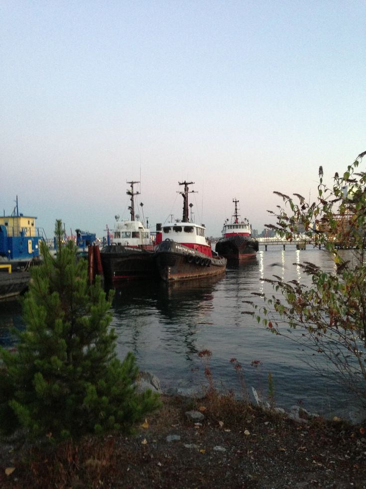 Tugboats in Vancouver harbour