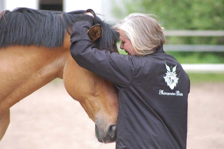 """""""Es gibt keine schwierigen Pferde, es gibt nur Pferde in Schwierigkeiten."""" - Wolfgang Marlie"""