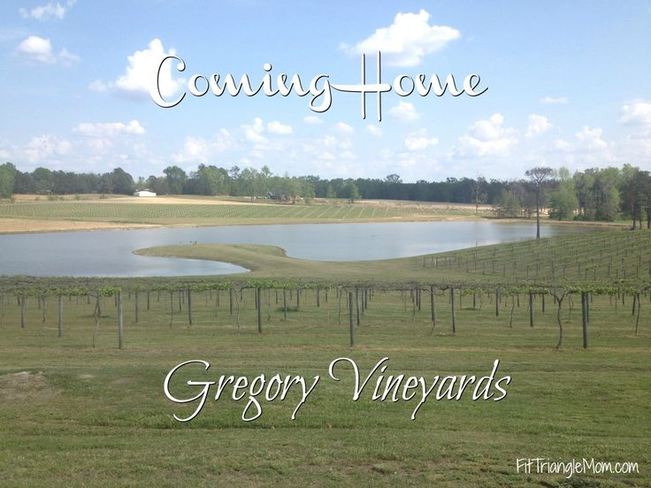 Gregory Vineyards is an escape from the busy city into the country of Angier, NC. Enjoy touring the vineyards, tasting wine and dinning at their restaurant, Lane's Seafood and Steaks. A paid partnership with NC Dept of Agriculture and Consumer Services and Gregory Vineyards. #ad #HomegrownFare17