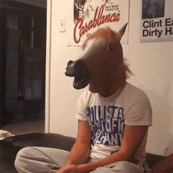 Funny horse mask gif - Reaction GIFS and Best Funny GIFS