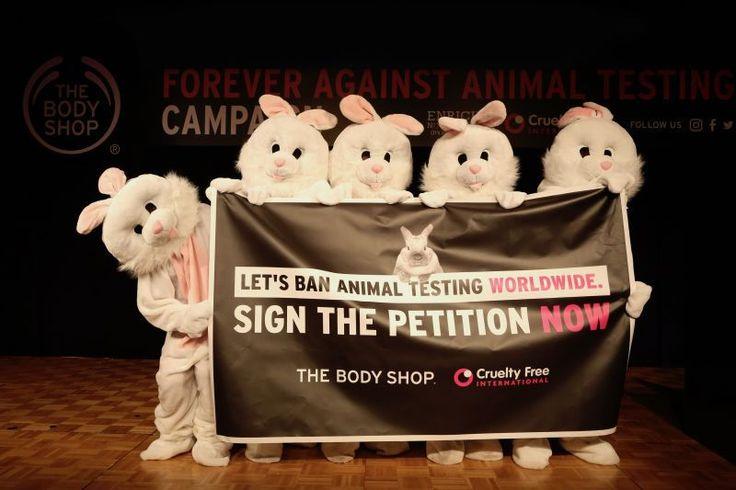 Laten we dierproeven wereldwijd verbannen The Body Shop was het eerste wereldwijde beauty-merk dat zich inzette tegen dierproeven. De afgelopen 30 jaar heeft zij hier samen met Cruelty Free International tegen gestreden, en deze moeite resulteerde in 2013 tot een Europees verbod. Maar dat is nog niet genoeg. Dieren lijden nog steeds voor beauty en de wetten rondom dierproeven zijn veel te gecompliceerd. The Body Shop en Cruelty Free International willen dit vereenvoudigen met één…