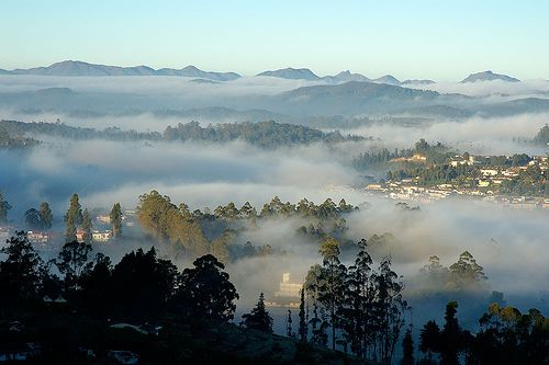Ooty, Tamil Nadu, India -- a resort town and a center for tea growing in the mountains in south western India. A favorite place for the British, while they ruled India. A beautiful place.
