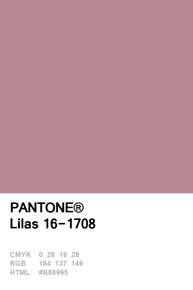 Pantone Lilas 16-1708 Colour of The Day 24 January
