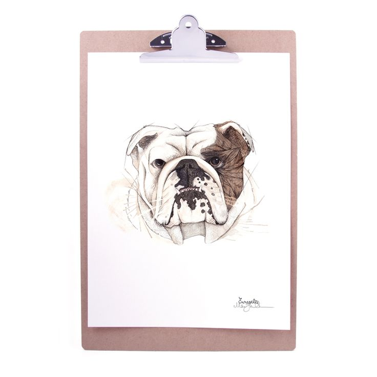 """Engelsk bulldog"" (English bulldog) Copyright: Emmeselle.no Illustration by Mona Stenseth Larsen"