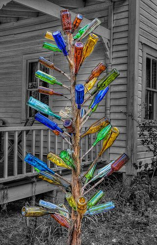 Bottle Tree Selective Color, southern folklore - catches the evil spirits before they enter your home