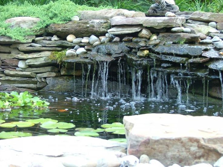 Backyard ponds and waterfalls bing images koi pond for Outdoor goldfish pond