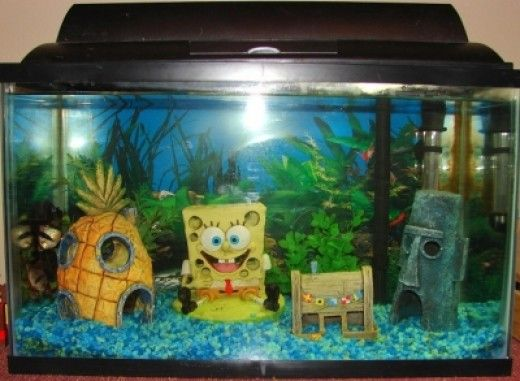 Spongebob Square Pants Is Right At Home In A Kids Fish