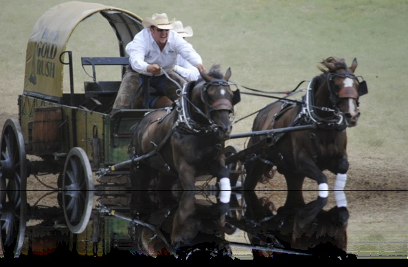 13 Best Images About Chuck Wagon Racing On Pinterest