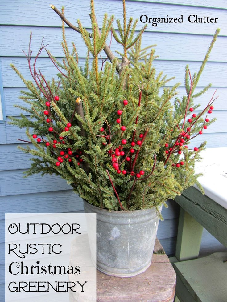 Galvanized Pails, Treetops, Twigs & Red Berries www.organizedclutterqueen.blogspot.com