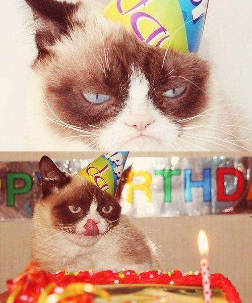Grumpy cat smiling birthday