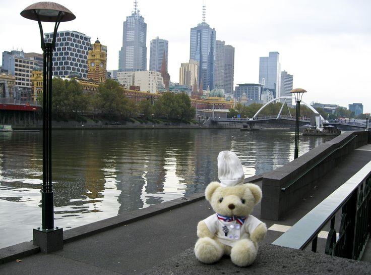 Bechamel Bear visited Melbourne!
