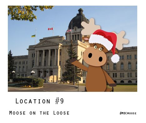 Time's almost run out to enter the Moose on the Loose! Contest to WIN a #MDCmoose holiday ornament!