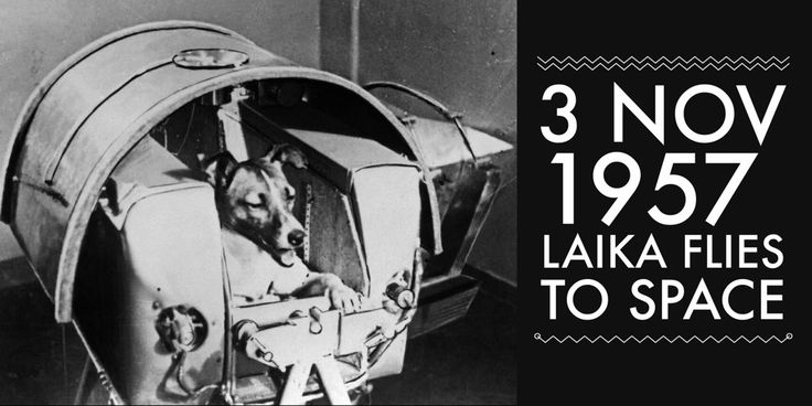 3 November 1957. Soviet Union launches Sputnik 2 with the world's first animal to enter orbit - a dog named Laika