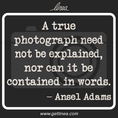 """""""A true photograph need not be explained..."""" ~Ansel Adams -- Click through for more photography quotes you should know."""