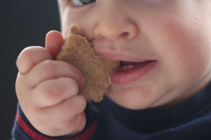 Confesso que não é fácil quando temos um bebé que come de tudo, mas que é necessário ter cuidados devido à sua alergia, e que quando está na fase de dentição só quer é moer.   #6 meses #Alergia Leite #APLV #baby food #bebe sabe comer #blw #bolacha #comida bebé #comida saudável #Healthy #healthy food #Lanche #saudável #sem açúcar #Sem leite #Sem ovo #vegan #vegetariano