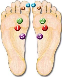 This covers 5 Reflexology points that are found to be very powerful in this wonderful world of Reflexology.    I have given a quick description...