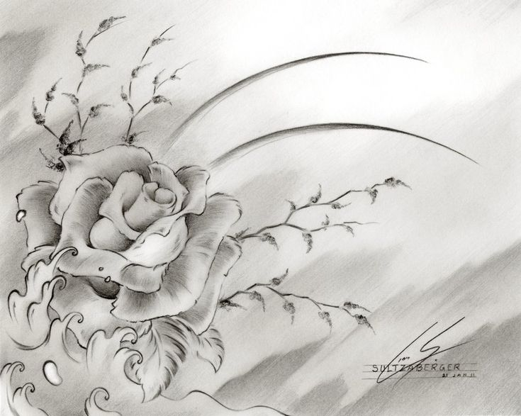 Rose Drawings in Pencil | drawings of flowers awesome ...