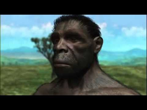 THE EVOLUTION OF THE HUMAN MIND - NOVA DOCUMENTARY - History Discovery L...