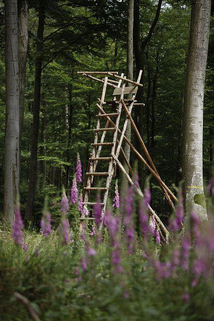 Hochsitz - #BaySF #Staatsforsten #Wald #Wild #Jagd #Jagen #Jäger #Tier #Tiere #Ansitz #Hochsitz