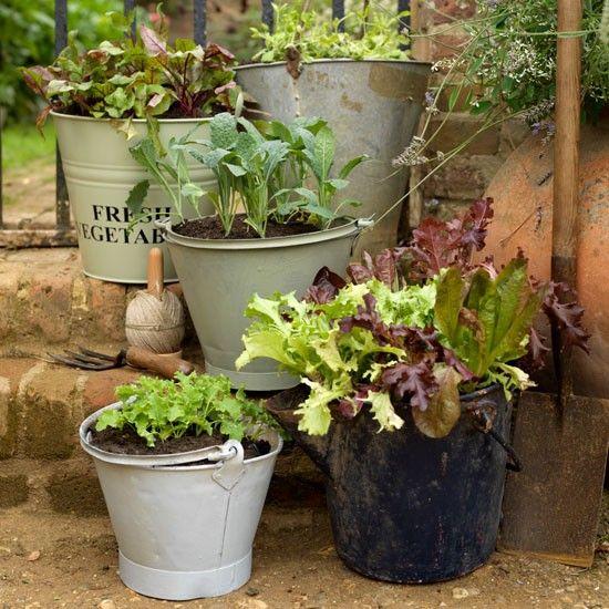 Bucket Planters Country Garden Ideas Garden Photo Gallery