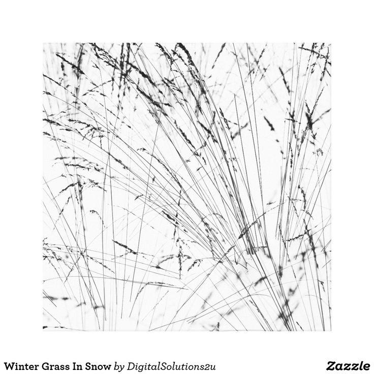 Winter Grass In Snow Canvas Print