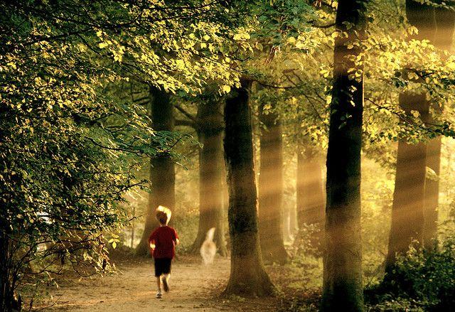 Walking the dog | Flickr - Photo Sharing!