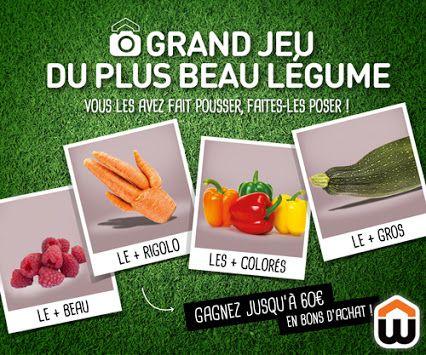 Vous êtes fier de vos fruits et légumes? Montrez les nous et tentez de gagner des bons d'achat !  Pour participer, rien de plus simple : vous avez récolté un fruit ou un légume atypique, biscornu, géant…? Il suffit de prendre une photo de soi posant avec sa récolte, et de la publier sur la page Facebook du magasin avec le haschtag #MonPlusBeauLegume. On peut également apporter son plus beau légume en magasin, prendre la pose devant l'affiche « Grand jeu du plus beau légume », et un membre…
