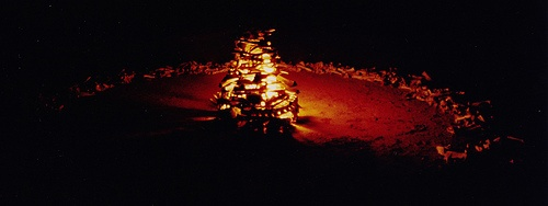 Bone Circle - Bone Fire by enviro_art, via Flickr