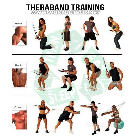 Theraband Training - Healthy Fitness Workouts Bicep Chest ...
