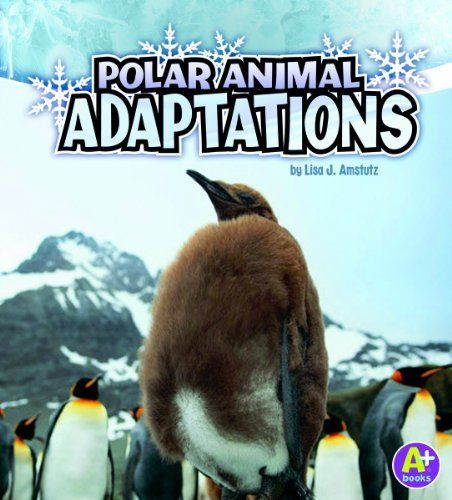 Polar Animal Adaptations (A+ Books: Amazing Animal Adaptations) by Lisa Jo Amstutz. $7.95. Reading level: Ages 5 and up. Publication: August 1, 2011. Series - A+ Books: Amazing Animal Adaptations. Publisher: Capstone Press (August 1, 2011)