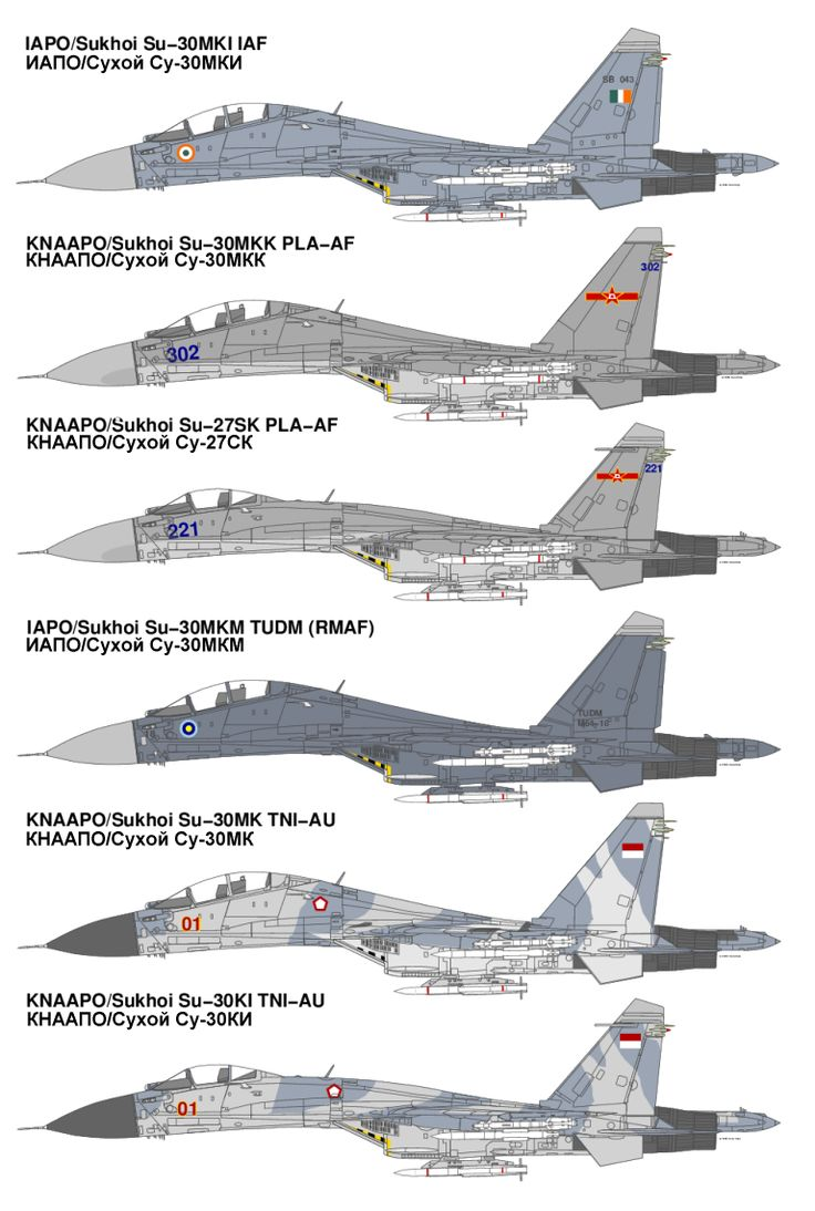 Asia's Su-27/30 Variants    Sukhoi's T-10 Flanker family of combat aircraft is without doubt the outstanding design in the final generation of Soviet Cold War era systems. Since the fall of the USSR, the Flanker has continued to evolve and is now by far the leading Russian military technology export.  The Flanker has been exported globally, and the Asia-Pacific now boasts the world's largest inventory of these versatile and highly capable combat aircraft.