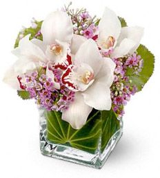 Newport Beach Flora ~ Hoag Hospital flower delivery
