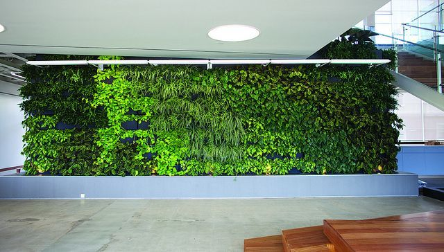 Charming Large Living Wall Installation In Los Angeles By Lean Arch